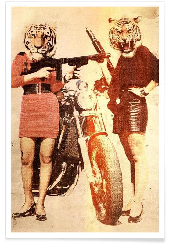 Créatures et hybrides, Tiger Girls affiche