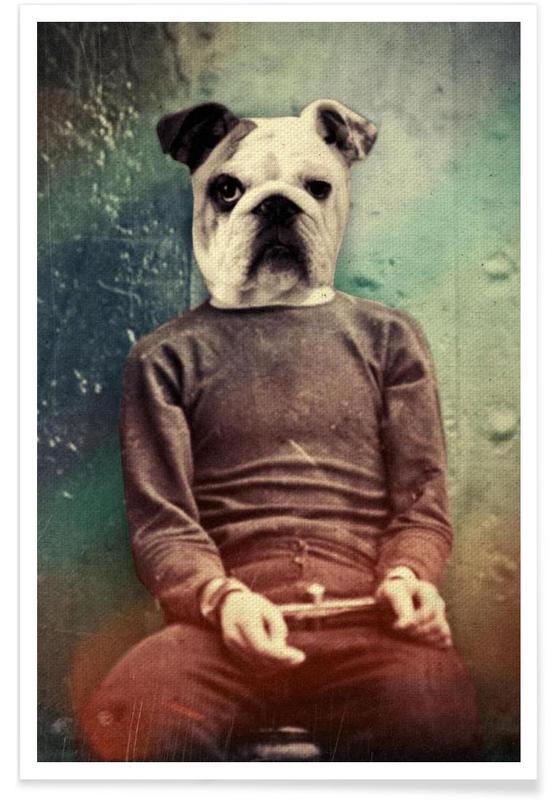 Bad Dog affiche