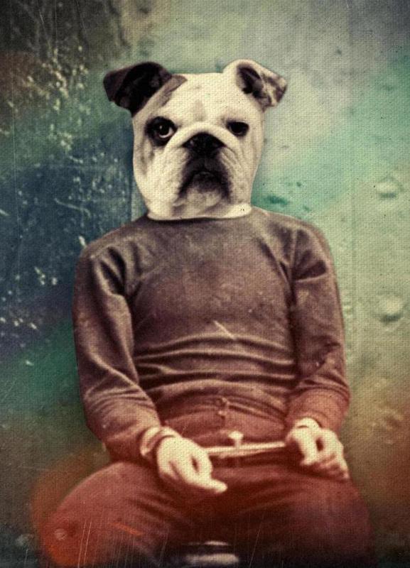 Bad Dog toile