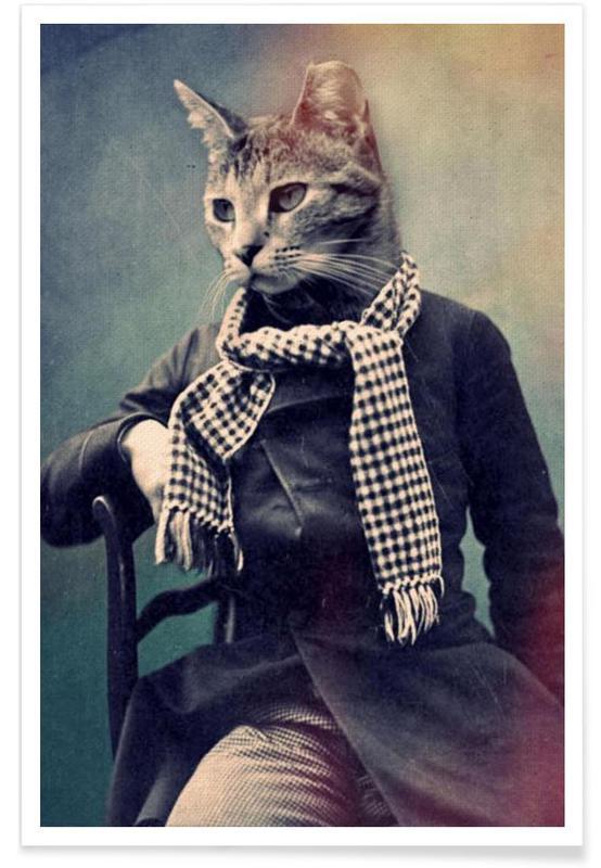 Cat in Scarf affiche