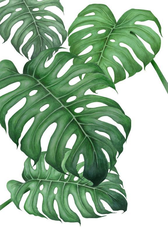 Tropical No.2 -Leinwandbild