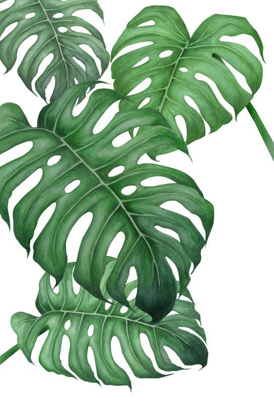 Tropical No.2 -Acrylglasbild