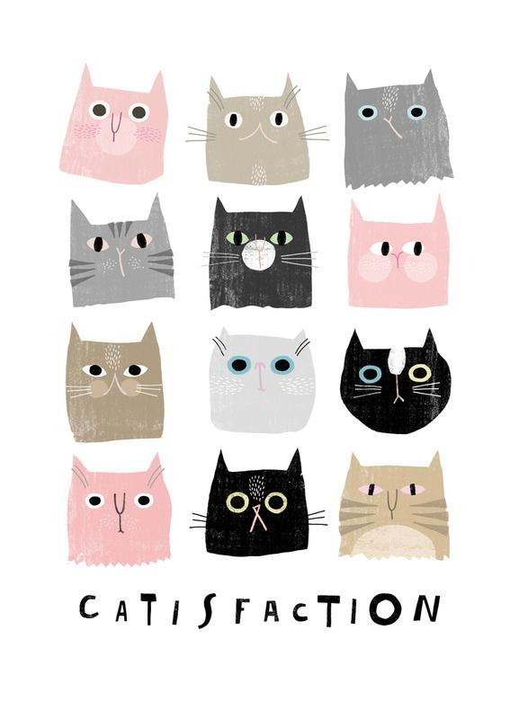 Catisfaction 1 -Leinwandbild