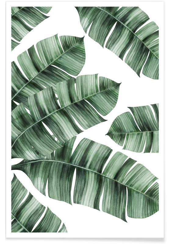 Foglie & piante, Palma del viaggiatore poster