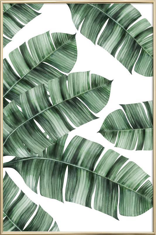 Tropical No. 8 affiche sous cadre en aluminium