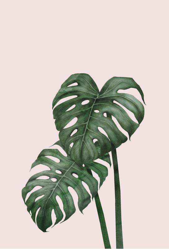 Tropical No. 9 alu dibond
