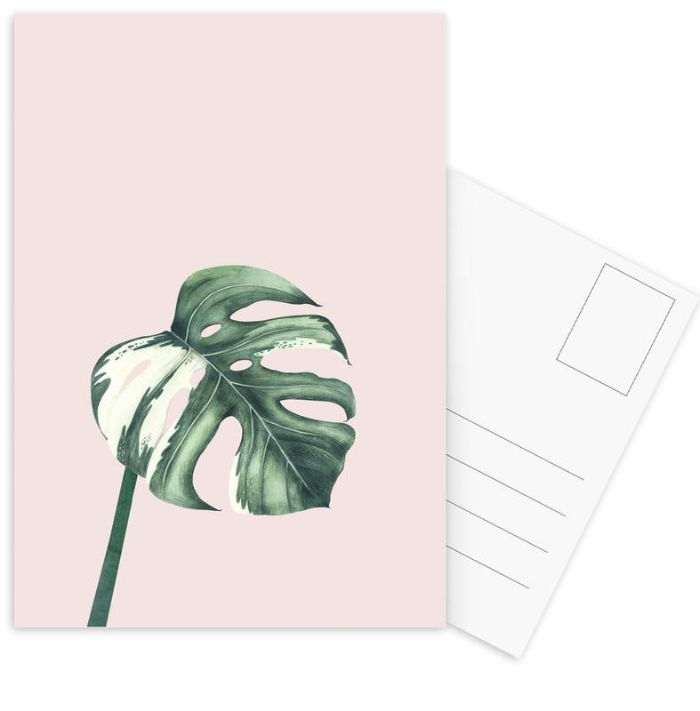 Bladeren en planten, Tropical No. 11 ansichtkaartenset