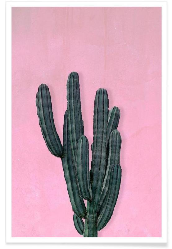 Kaktus affiche