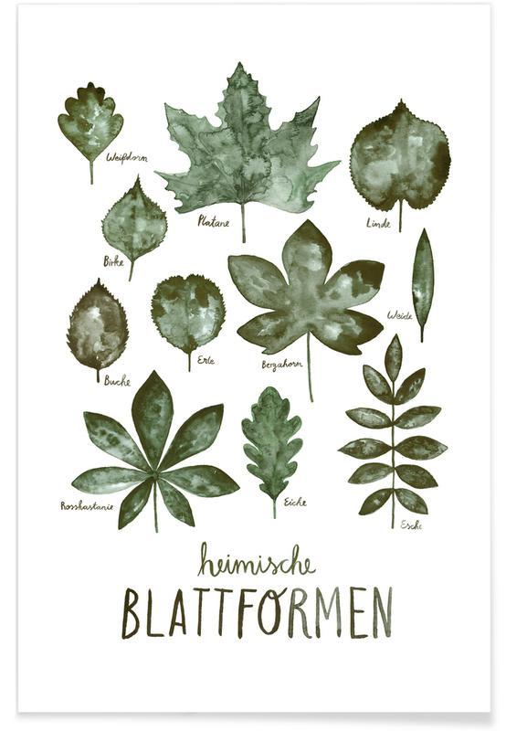 Blätter & Pflanzen, Blattformen -Poster