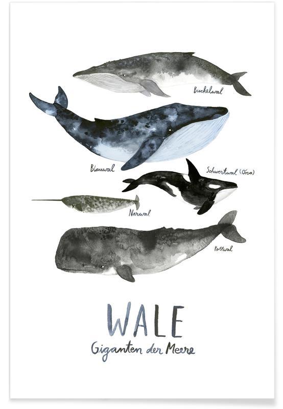 , Wale affiche
