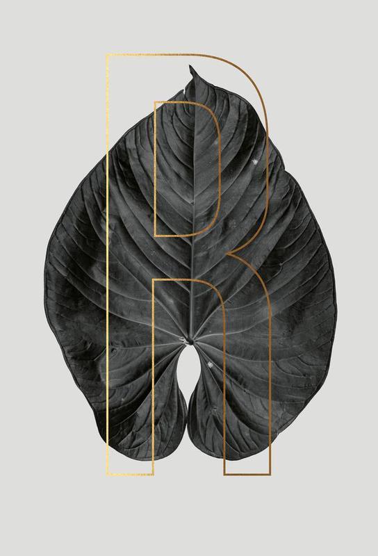 Plants R -Alubild