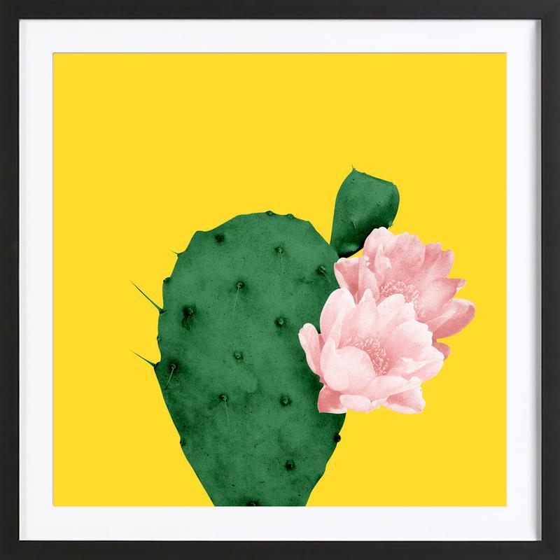 In Bloom Framed Print