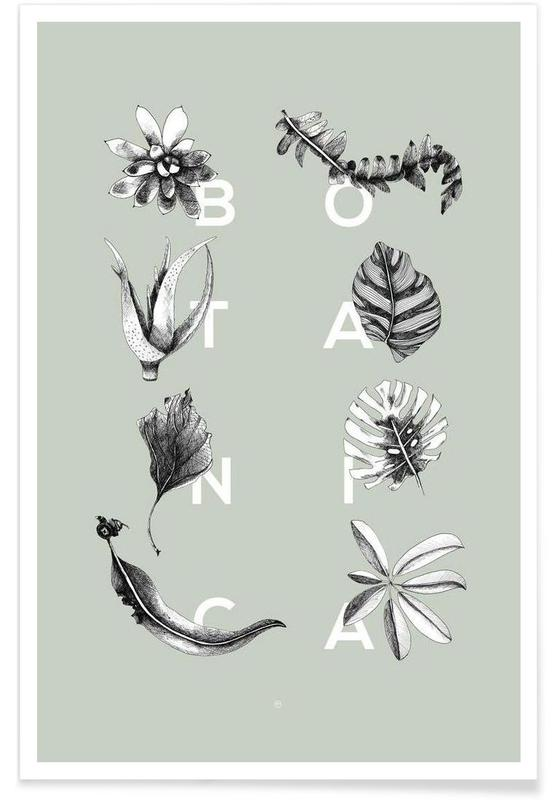 Botanica Letters Poster