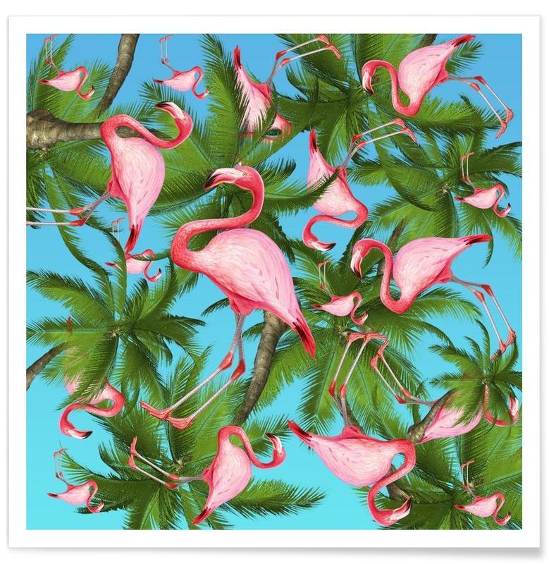 Flamingos, Summertime 1 -Poster