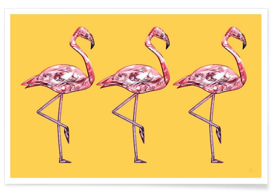 Flamingos, Flamingo Pink -Poster