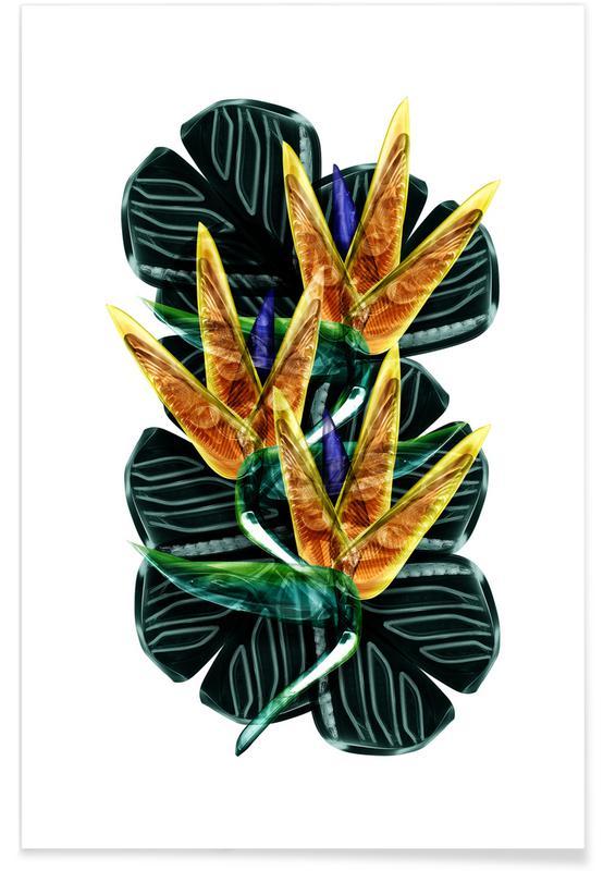 , Exotic Art 2 poster