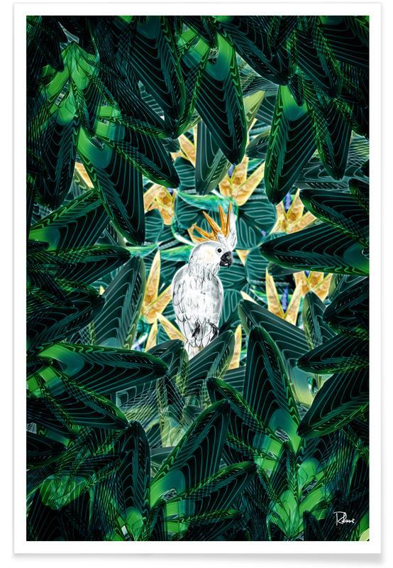 Kanaries, Bladeren en planten, Canope 1 poster