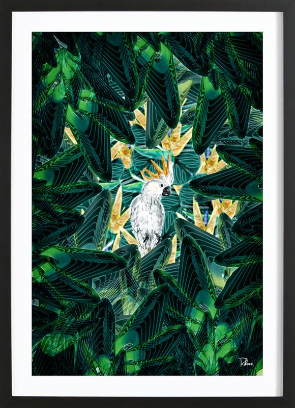 Canope 1 Framed Print