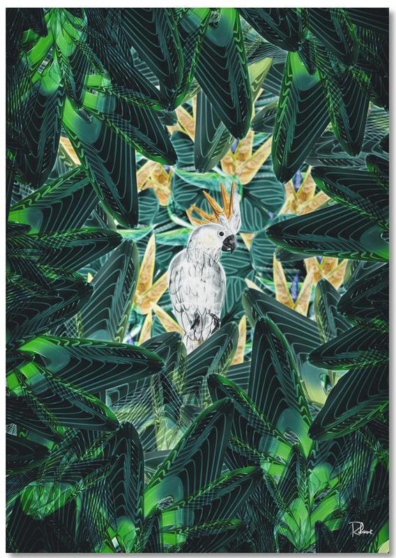 Kanaries, Bladeren en planten, Canope 1 Notebook
