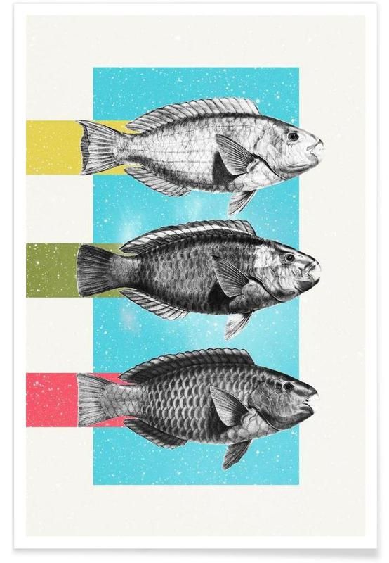 Fishes affiche