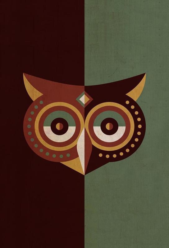 Owl Woods -Alubild