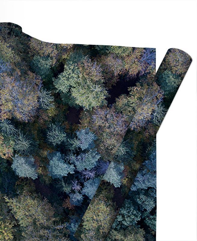 Autumn Forests from Above -Geschenkpapier