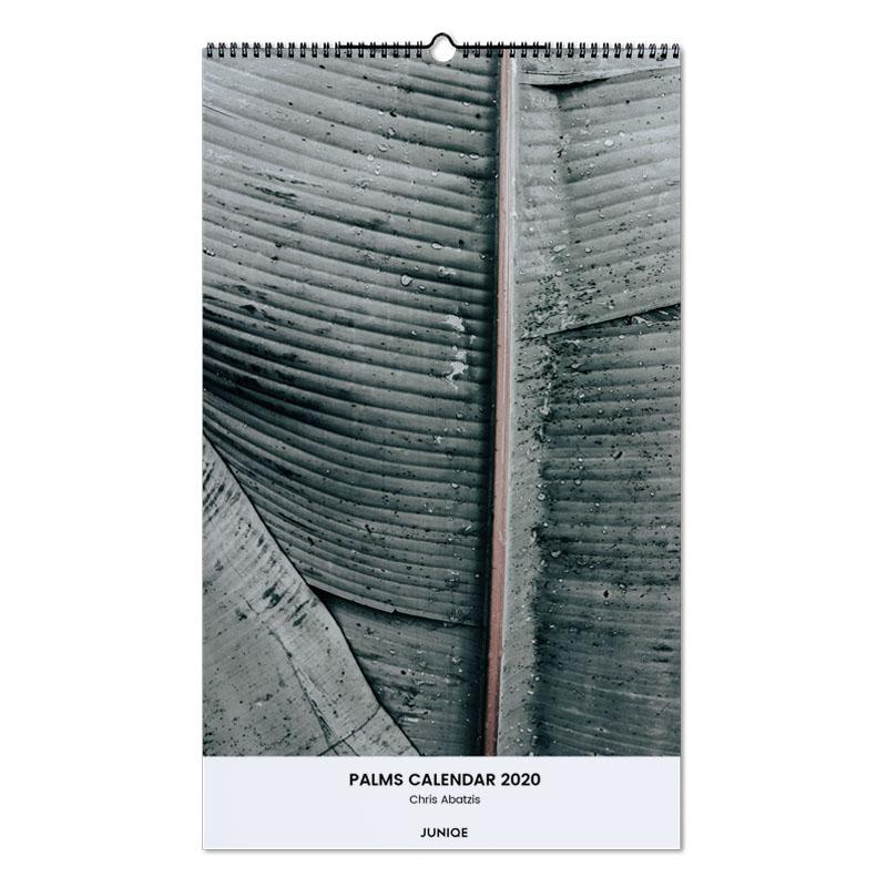 Palms Calendar 2020 - Chris Abatzis Wall Calendar