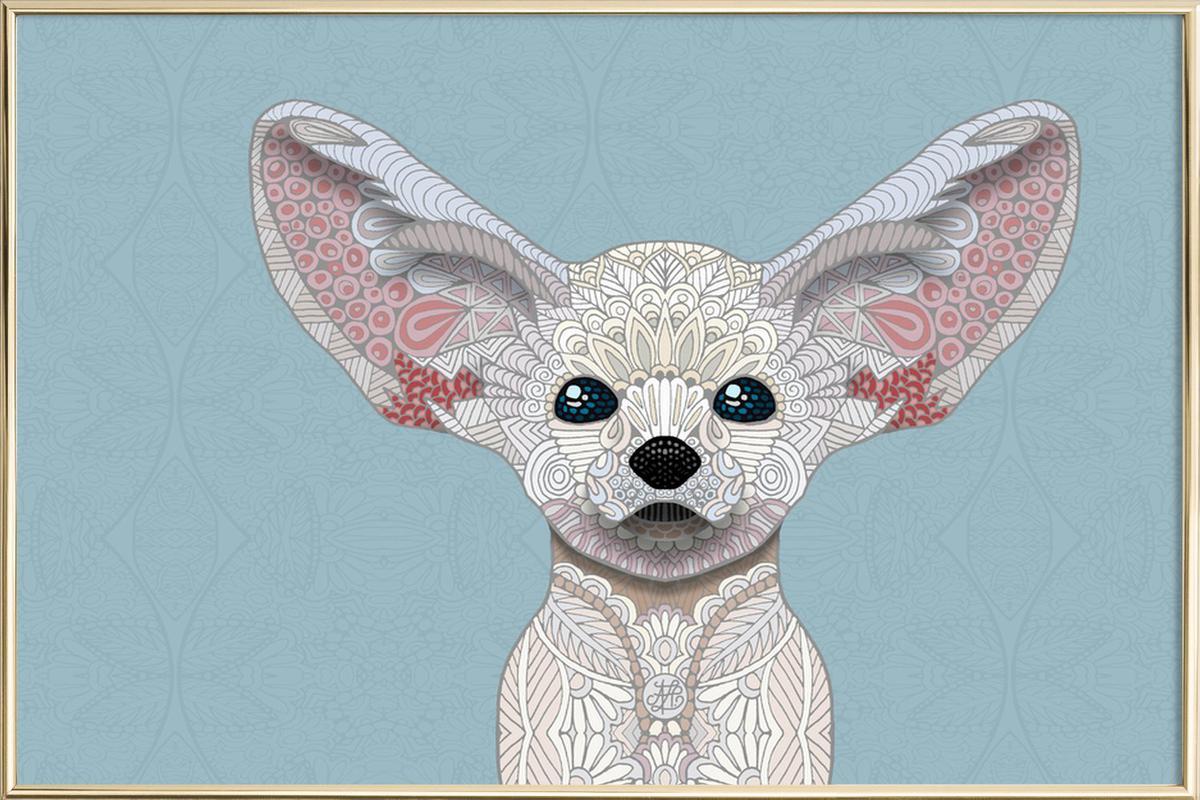 Fennec Fox -Poster im Alurahmen