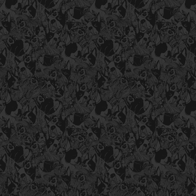 Boston Black acrylglas print