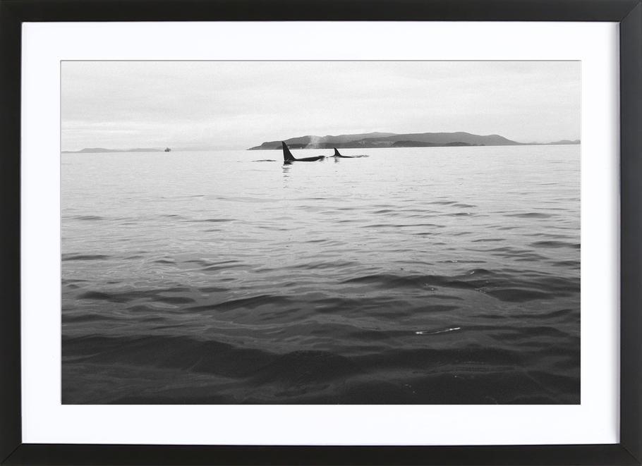 Canada 7 Framed Print