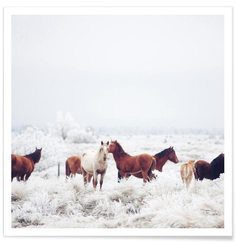 Winter Horseland Poster