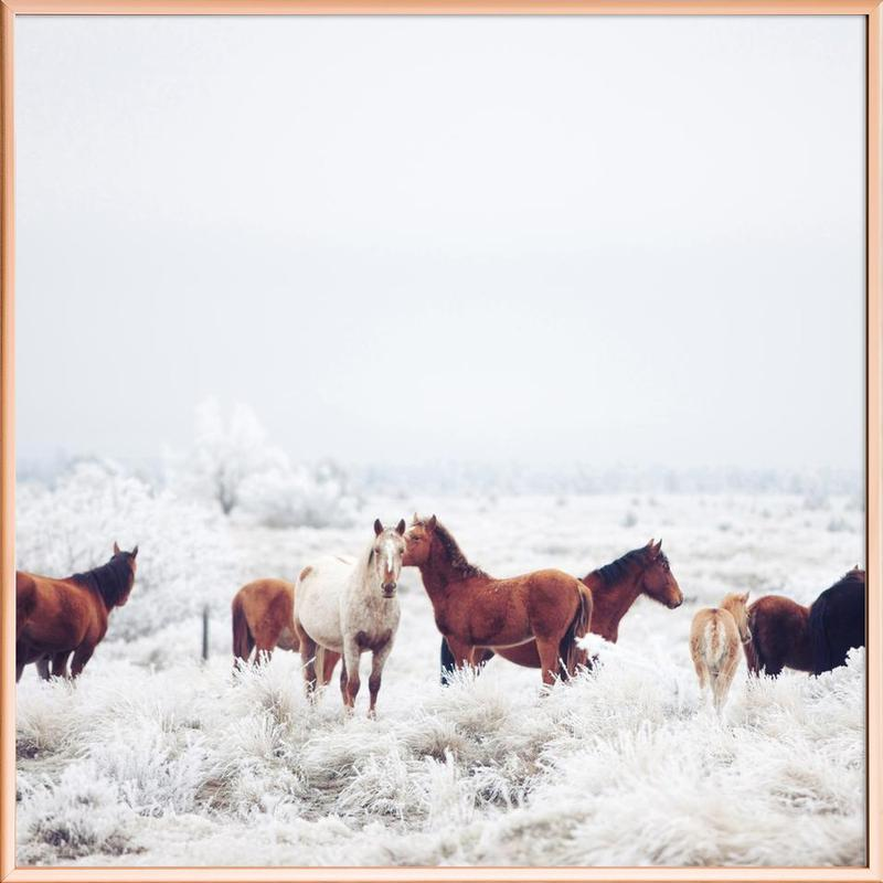 Winter Horseland Poster in Aluminium Frame