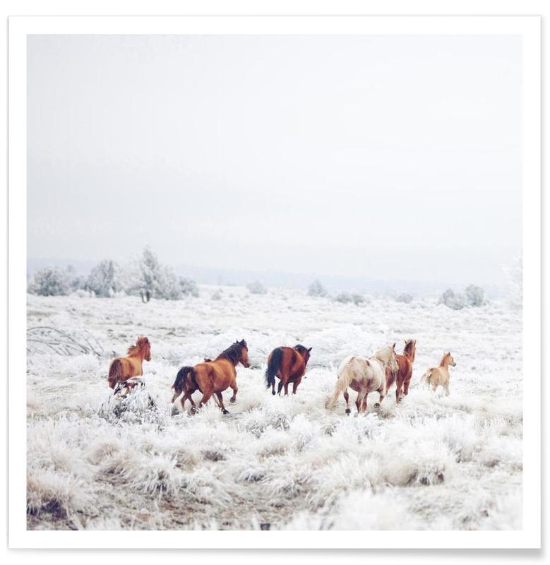 Chevaux, Winter Horses affiche
