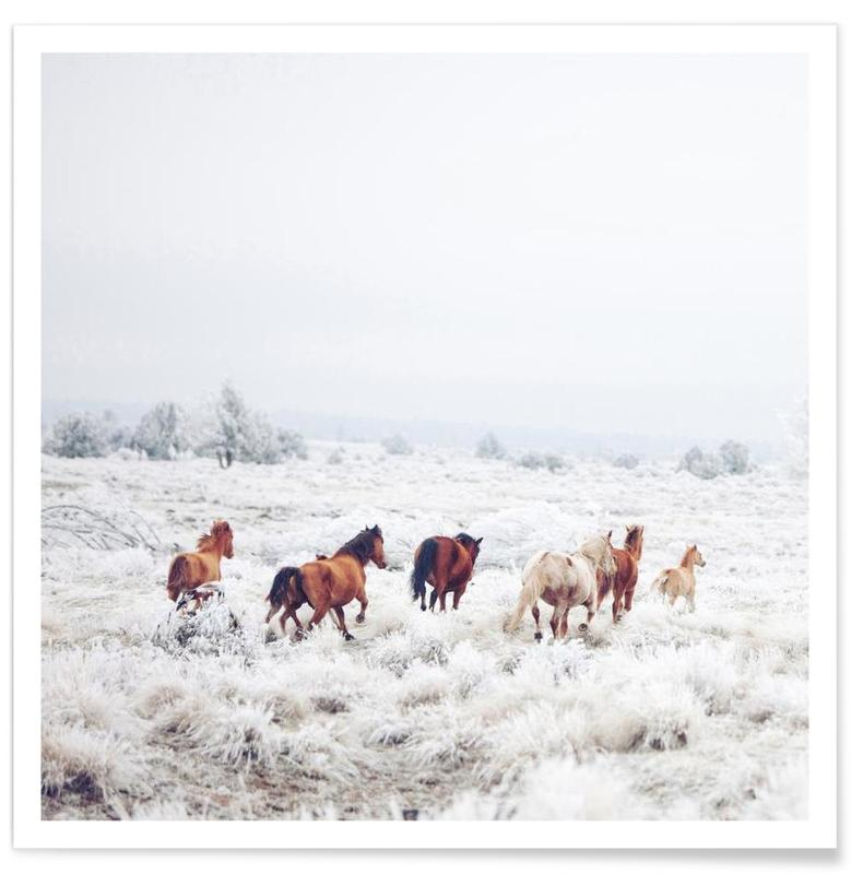 Winter Horses -Poster