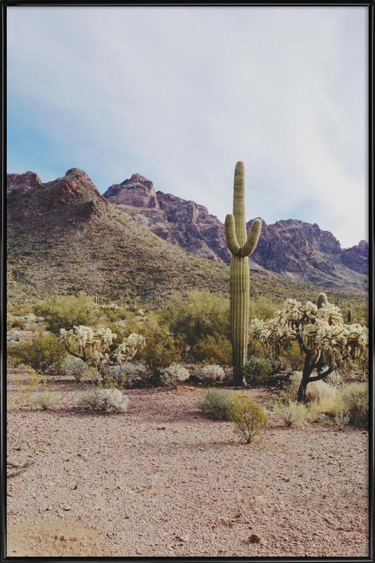 Arizona Cactus Framed Poster