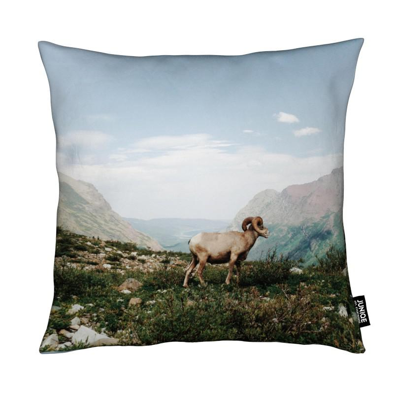 Moutons, Montagnes, Bighorn Sheep coussin