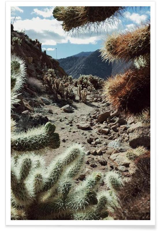 Mountains, Cholla Frame Poster