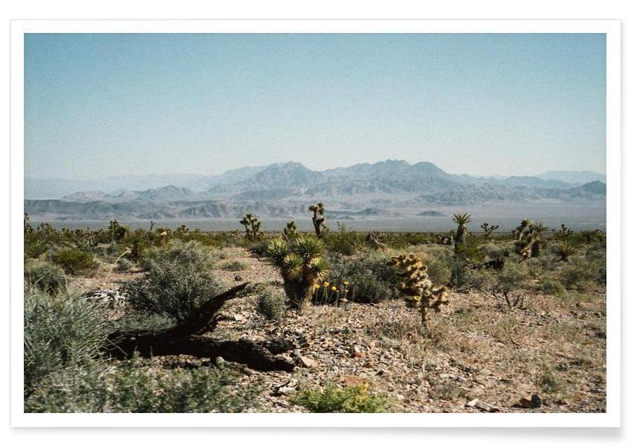 Wüsten, Nevada Desert Scene -Poster
