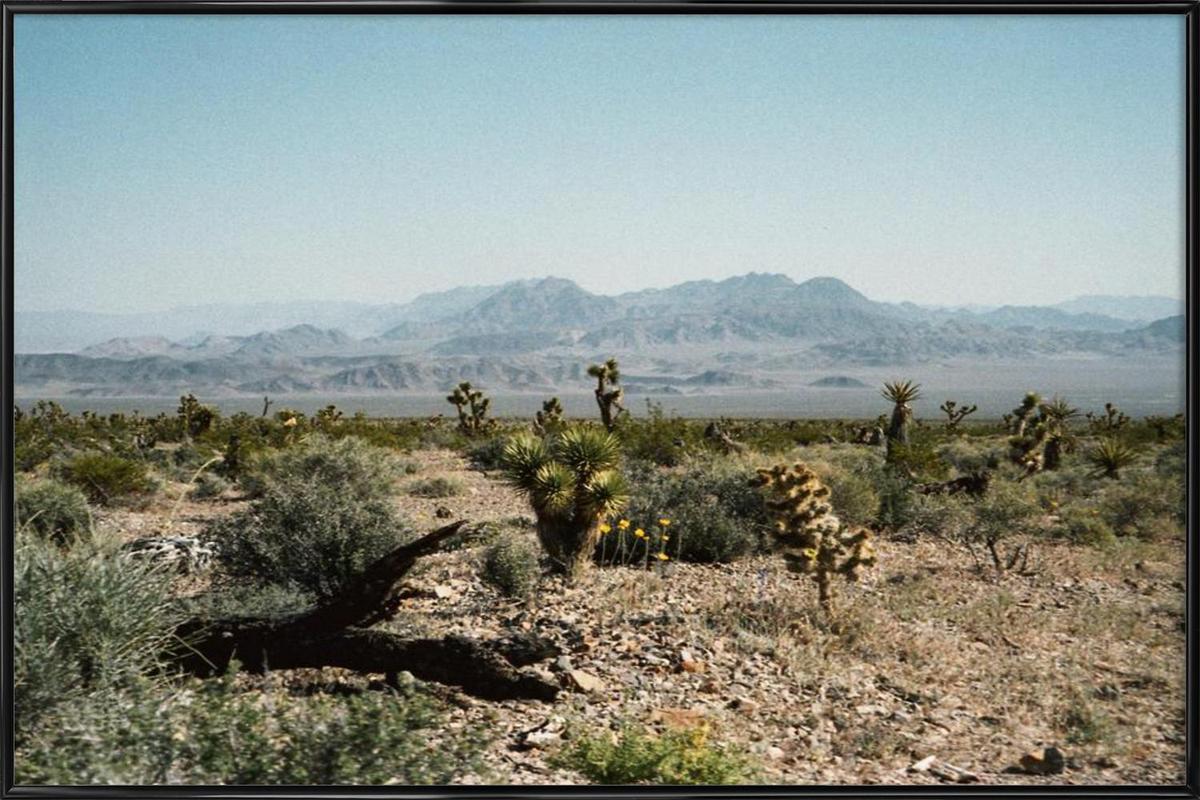 Nevada Desert Scene Framed Poster