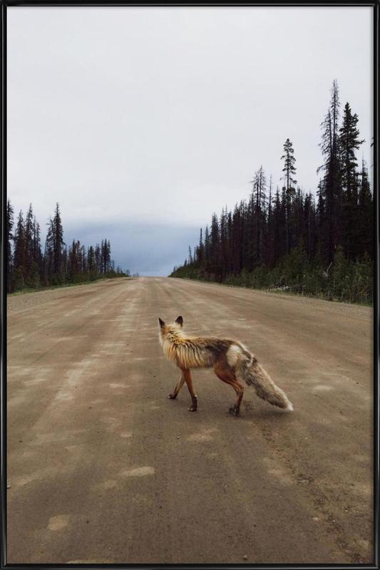 Road Fox -Bild mit Kunststoffrahmen