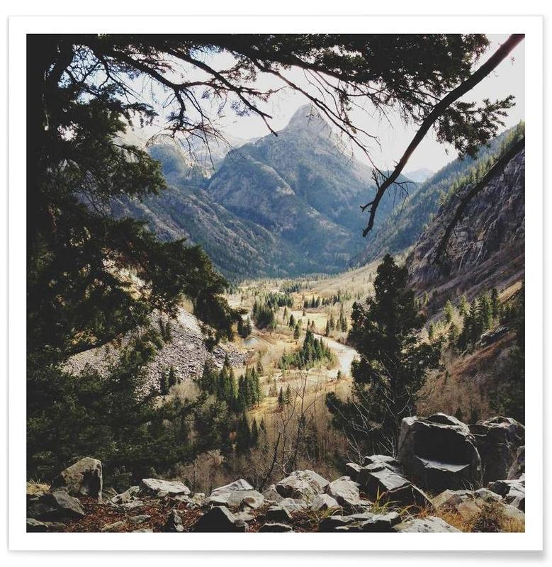 Wälder, Berge, San Juan Forest -Poster