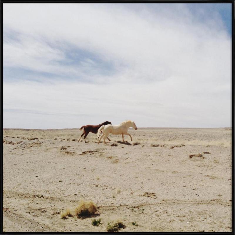 Bloomfield Horse Run ingelijste poster
