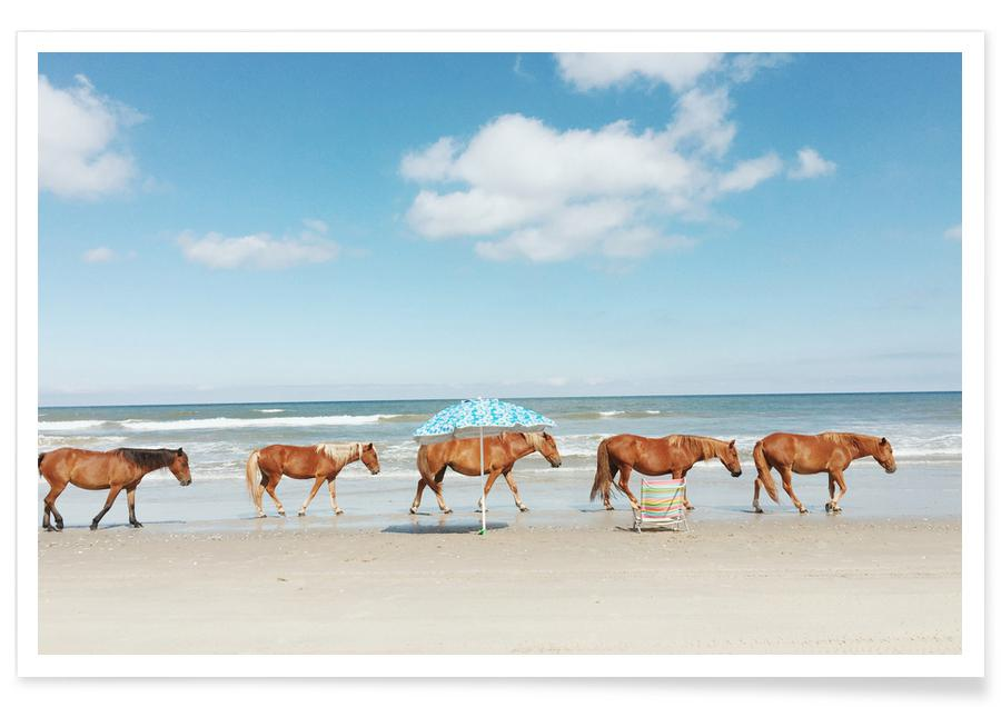 Pferde, Horses on Holiday -Poster