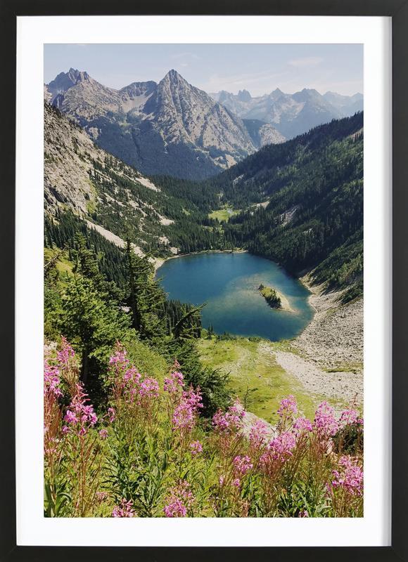 Cascade Summer Wildflowers Framed Print