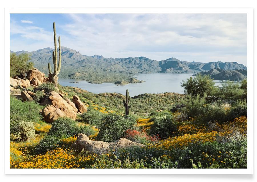 Ozeane, Meere & Seen, Blooming Desert -Poster