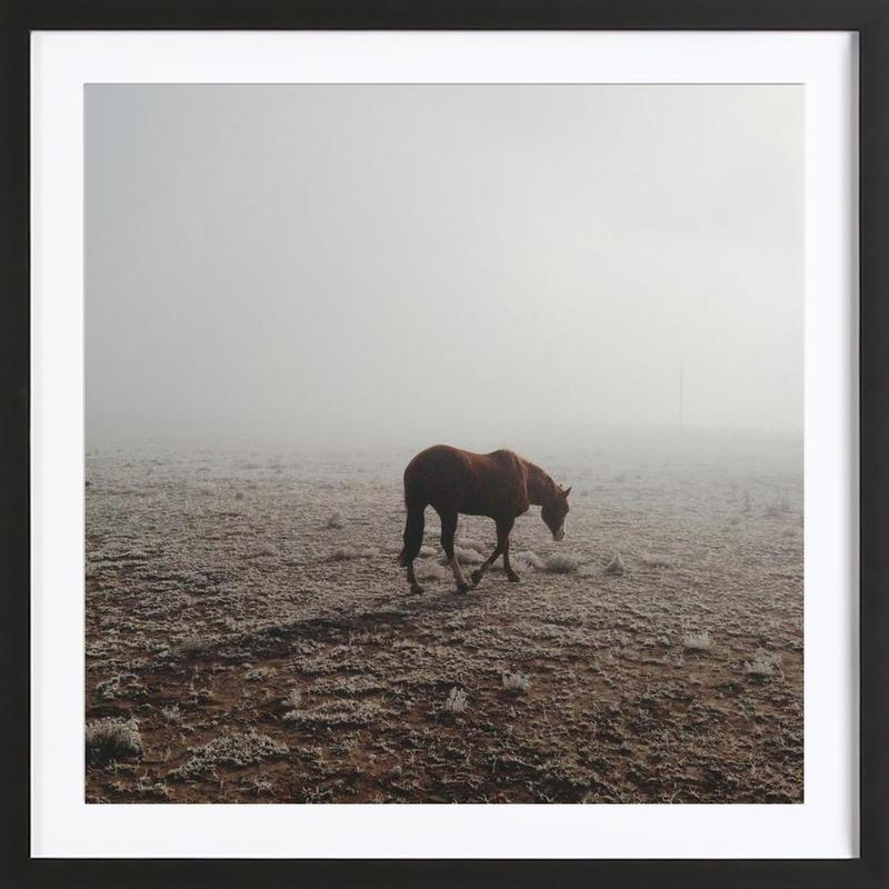 Fogged Horse ingelijste print