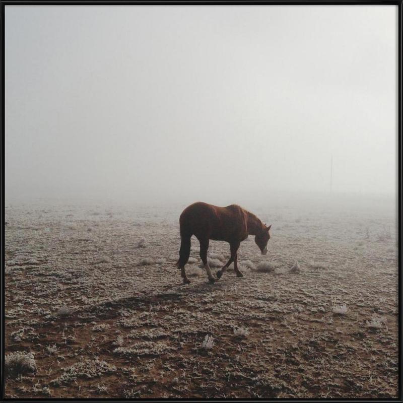 Fogged Horse Framed Poster