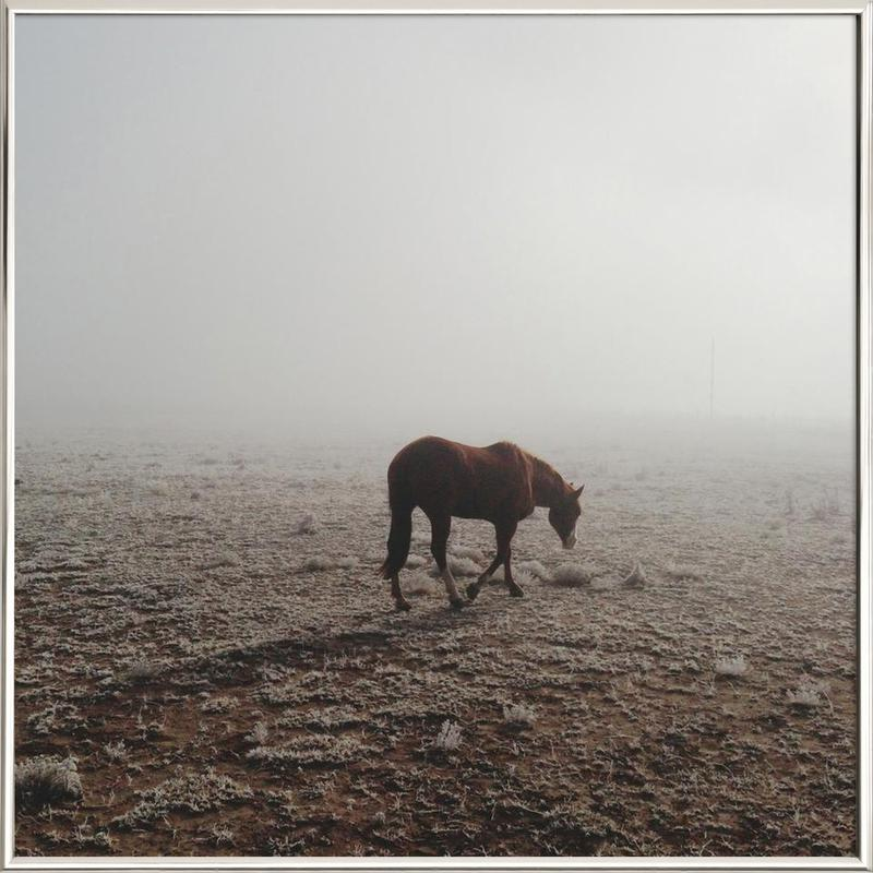 Fogged Horse Poster in Aluminium Frame