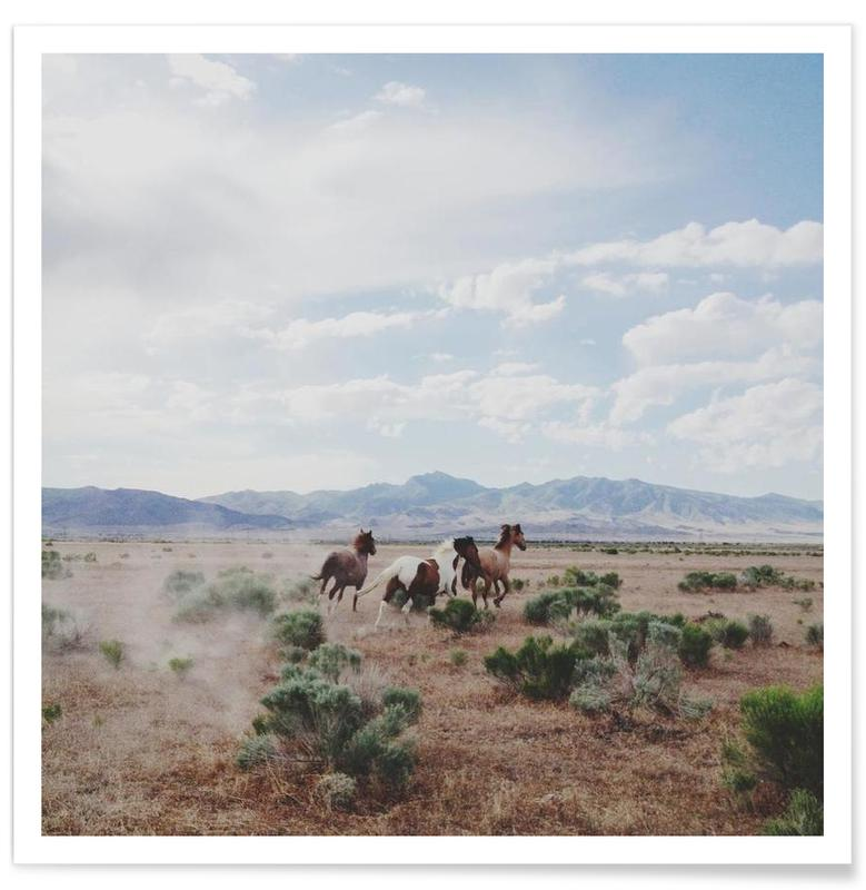 Woestijn, Paarden, Running Horses poster