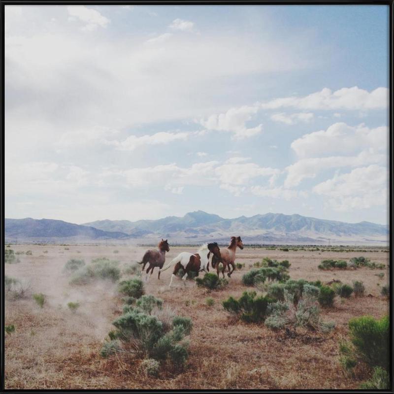 Running Horses ingelijste poster
